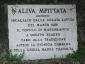 aliva-mpittata-04