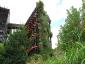 Il giardino verticale del Musée du quai Branly 14
