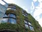 Il giardino verticale del Musée du quai Branly 16