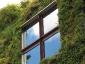 Il giardino verticale del Musée du quai Branly 18
