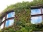 Il giardino verticale del Musée du quai Branly 19