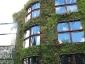 Il giardino verticale del Musée du quai Branly 25