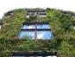 Il giardino verticale del Musée du quai Branly 26