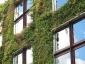 Il giardino verticale del Musée du quai Branly 27