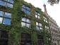 Il giardino verticale del Musée du quai Branly 28
