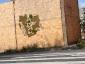 I graffiti verdi di Edina Tokodi