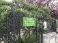 La Robinia pseudoacacia di square viviani a Parigi 7