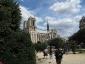 La Robinia pseudoacacia di square viviani a Parigi 8