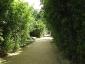 parc-ancre-citroen-22