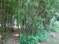 parc-ancre-citroen-24