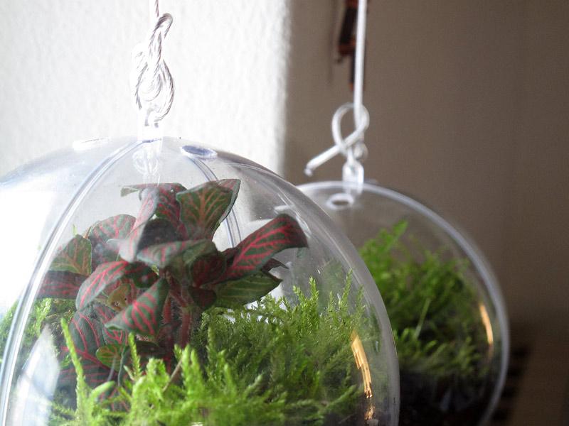 Video un giardino dentro una palla florablog for Arredamento alternativo
