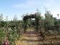 Florablog-Roseto-Botanico-Carla-Fineschi-52.jpg