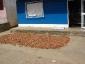 08-cacao-essiccazione-esterna2.jpg