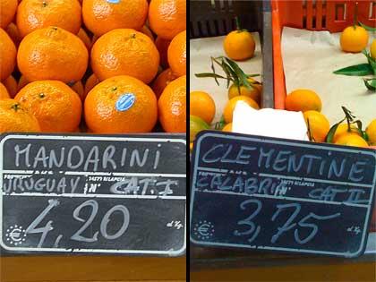 Mandarini uruguayani Vs. Clementine calabresi