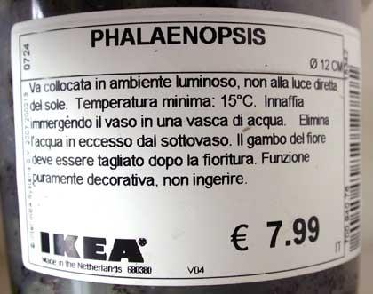 L\'etichetta della Phalaenopsis venduta da Ikea