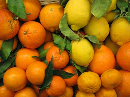 arance, limoni, mandarini e clementine