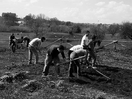 L\'Italia e la grande fuga dall\'agricoltura: ci salverà la crisi?