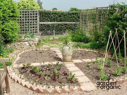 rotazione-delle-colture-by-garden-organic