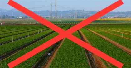 morte-agricoltura
