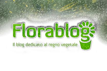 florablog-neve