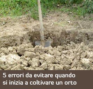 5 errori da evitare quando si inizia a coltivare un orto