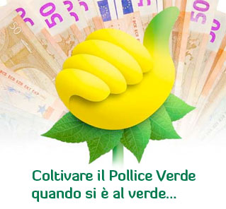 Coltivare il Pollice Verde quando si  al verde