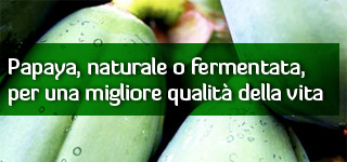 Papaya, naturale o fermentata, per una migliore qualit della vita