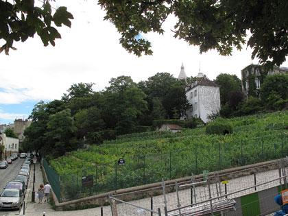 Cartoline da Parigi, la vigna di Montmartre