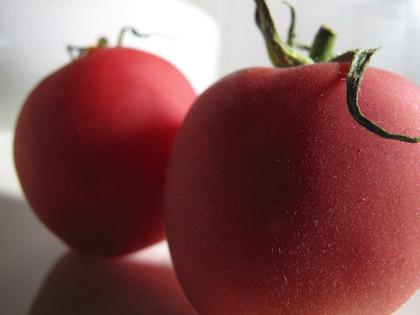 Varietà rare: il pomodoro Pêche Rose
