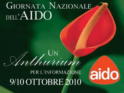 Giornata nazionale dell'AIDO, un Anthurium per l'informazione (e per la vita!)