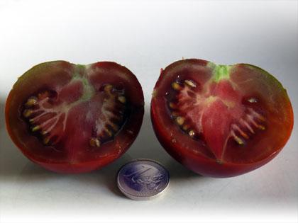 Varietà di pomodoro, il nero di Crimea