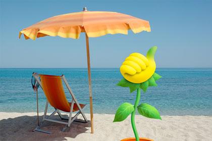 Buone vacanze a tutti da Florablog! e arrivederci a settembre