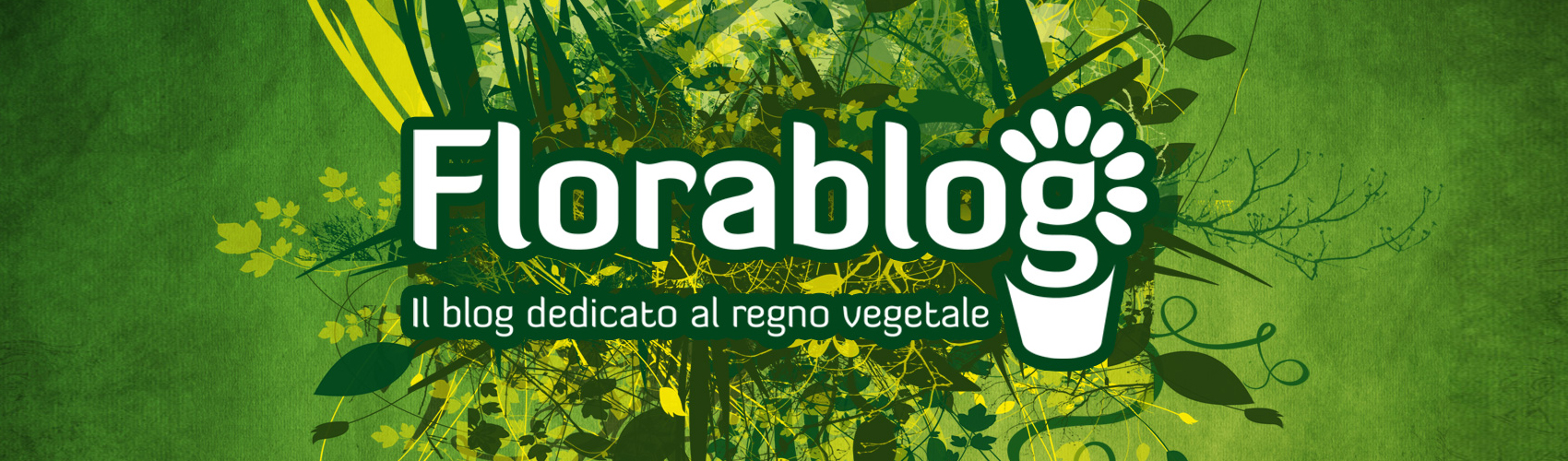 Come Potare A Palla video, un giardino dentro una palla | florablog